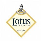 Lotus Footwear
