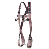 Pioneer 2-Point Harness - Front & Rear Attachment