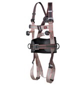 Pioneer 3-Point Harness - 3-Points of Attachment