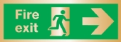 fire exit arrow right (Brushed Aluminium)