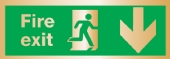 fire exit arrow down (Brushed Aluminium)