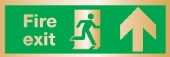 fire exit arrow up (Brushed Aluminium)