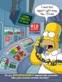 Simpsons emergency seconds count